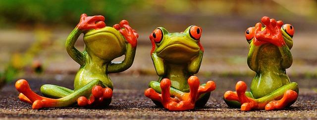 Gut Beraten Drei Frösche sehen hören sagen nichts 42 Denker