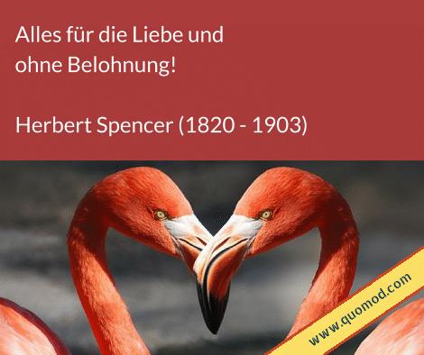Zitat von Herbert Spencer: Alles für die Liebe und ohne Belohnung!