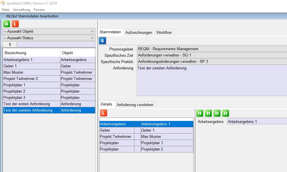 Version 21-0219, Anforderungen verwalten, Bildschirmfoto 1: Neue Auswahl Felder Prozessgebiet, Spezifisches Ziel und Spezifische Praktik